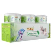 vediva-orthayu02